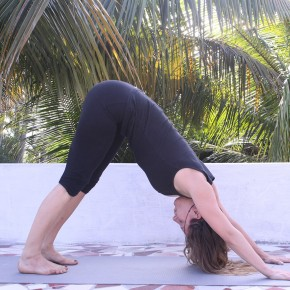 transformational yoga  all life is yoga